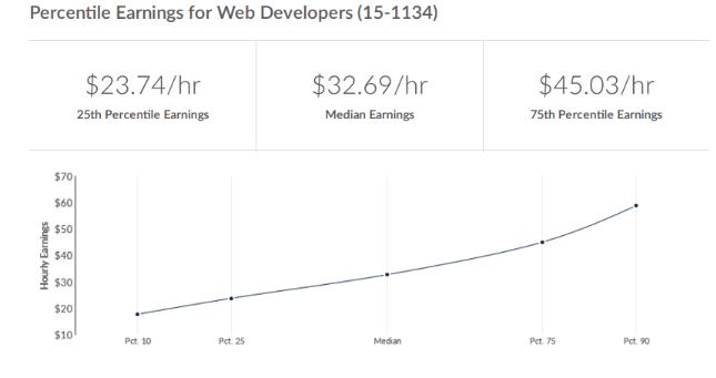Why You Should Pursue a Web Developer Career